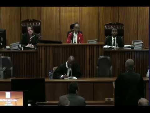 Oscar Pistorius Trial: Tuesday 8 July 2014