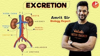 ANIMATED Excretion | Excretory System | Life Processes | Class 10 Science Biology | Vedantu Class 10