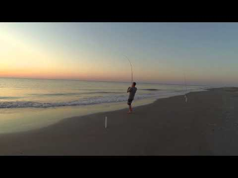 Tybee Island Shark Fishing