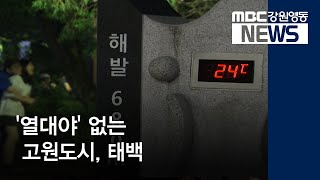 R]'열대야' 없는 고원도시, 태백