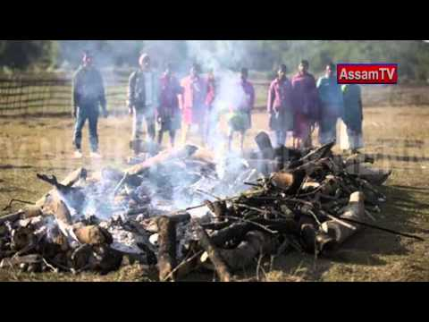 Bodoland Violence continuing in Assam.