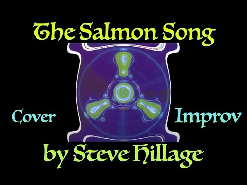 The Salmon Song (riff) by Steve Hillage, performed by James Hollingsworth.