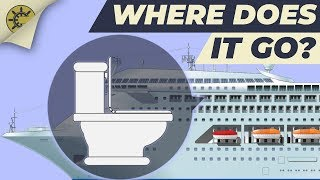 What happens after you flush the toilet on a cruise ship?