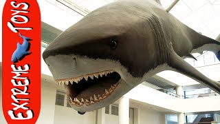 Extreme Toys TV Lost Files. Sea World, Natural History Museum, and a Giant Dust Storm!