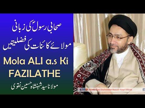 Sahabi Rasool (s.a.w.w) Ki Zabani Mola Ali a.s k Fazilathe by Allama Syed Shahenshah Hussain