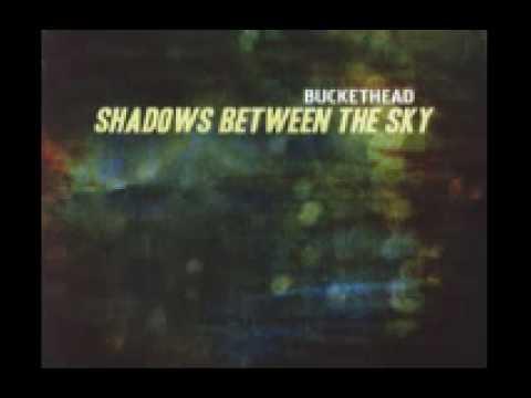 Buckethead - Andrew Henrys Meadow