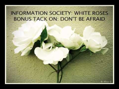 Information Society - White Roses 1.0