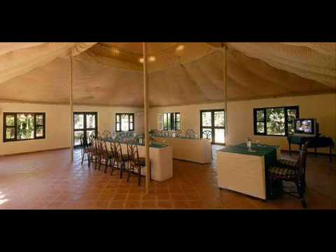 India Gujarat Sasan Gir Lion Safari Camp India Hotels India Travel Ecotourism Travel To Care