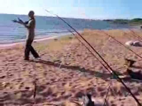 рыбалка на азовском море кефаль и пеленгас