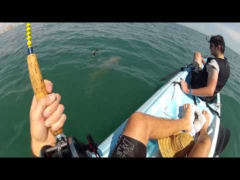 DAYTONA BEACH SHARK FISHING FROM KAYAKS GOPRO