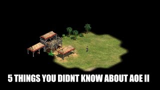 5 Things You Probably Didn't Know About AoE II