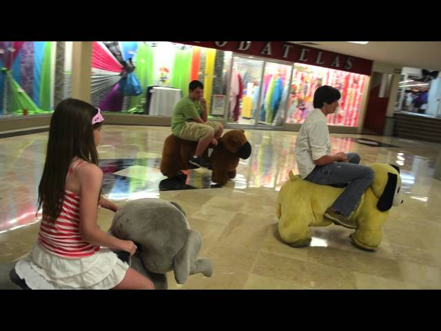 Stuffed Animal Ride - Chedraui Mall, Cozumel