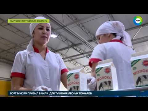 Кыргызстан начинает транзит продуктов через Казахстан - МИР24