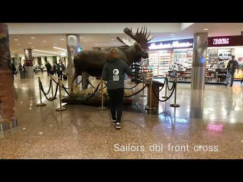 Airport Shines Alaska