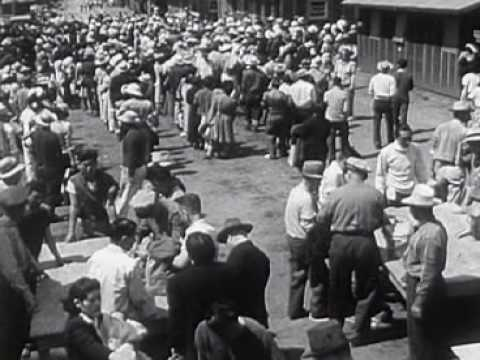 Why Did the U.S. Intern the Japanese During WW II?