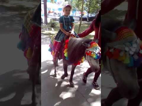 Алиса катается на пони.