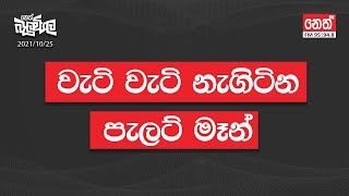2021-10-25 | Neth Fm Balumgala