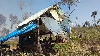 Một ngày trong rừng sâu Campuchia