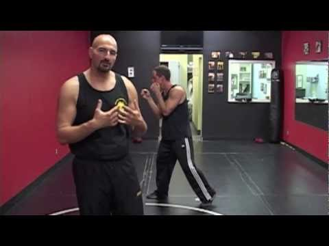 How To Punch (The Jeet Kune Do Straight Lead) Image 1