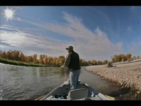 Go Pro, Fly Fishing, Underwater Footage, Rainbow Trout