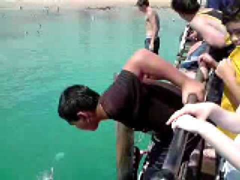 Haha Some Guy Fucked Up A Chinaman At Porties Jetty video