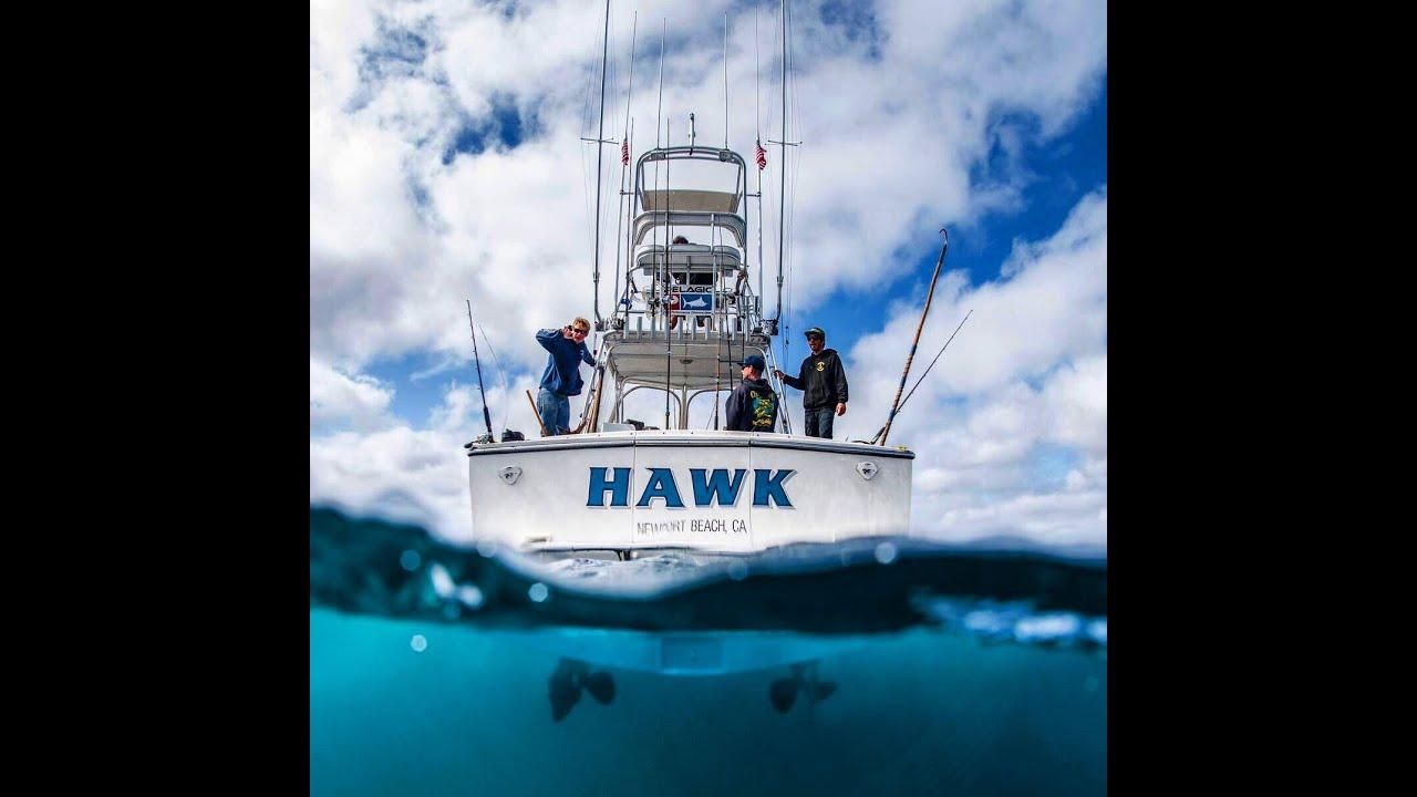 Catalina island yellow tail fishing fishing central for Catalina island fishing charters