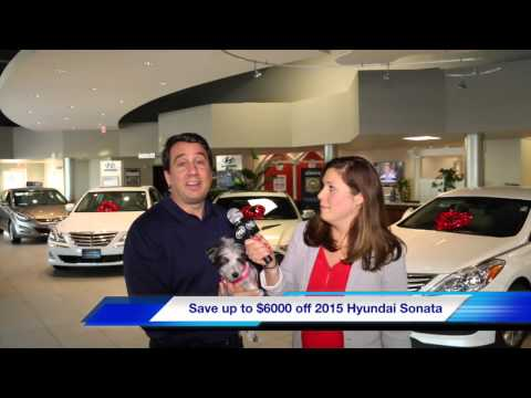 Quality Hyundai President's Month Sales Event near New Haven, CT