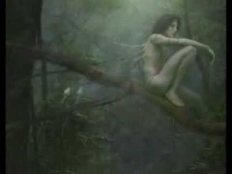 Faerie Realm Too... Music by Craig Patterson & Wendy Rule Music Videos