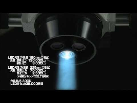 マニーZ LED