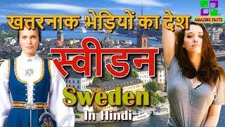 स्वीडन खतरनाक भेड़ियों का देश // Sweden a amazing country