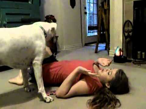 Dog attacks girl!