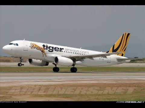 Tribute To Tiger Airways