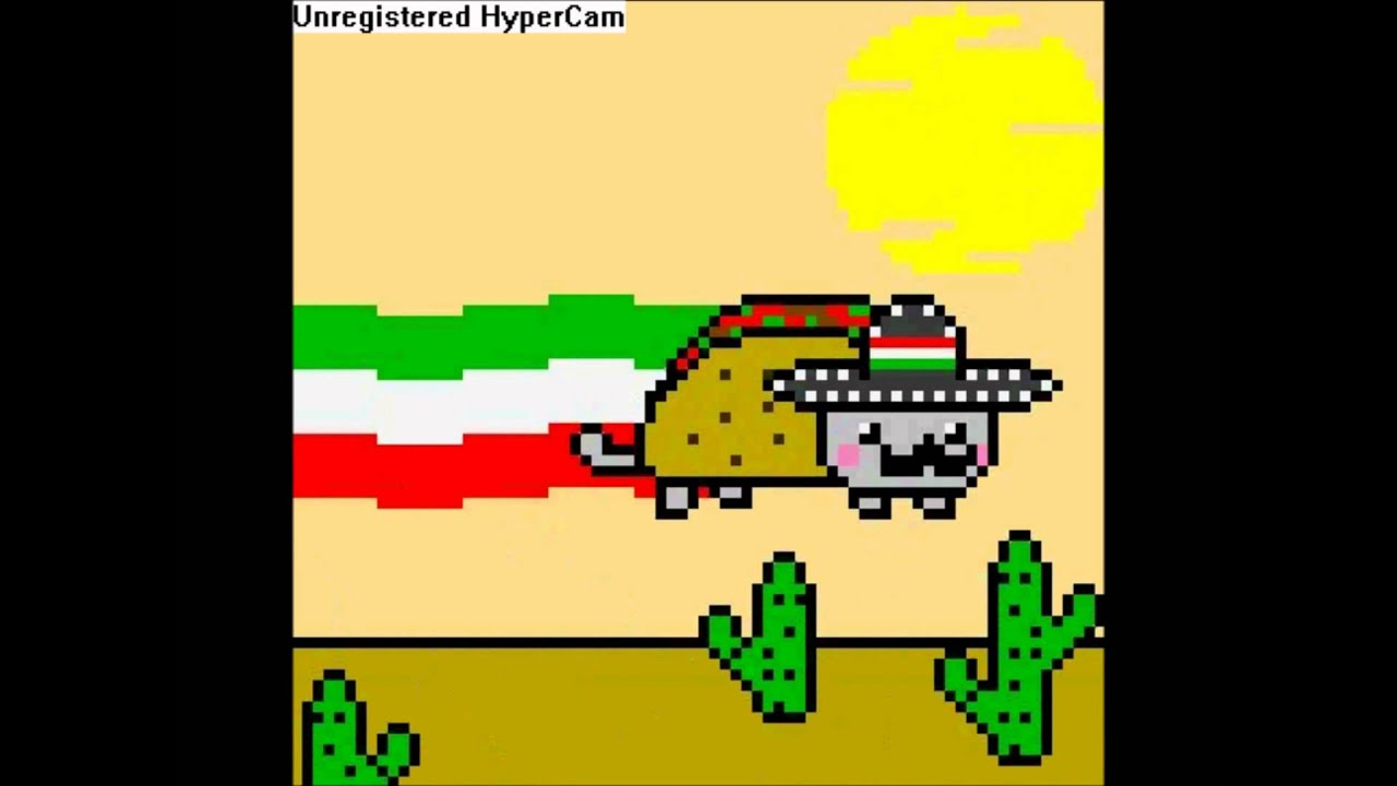 Mexican Nyan Cat Gif Mexican Nyan Cat
