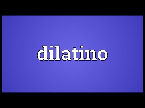 Header of dilatino