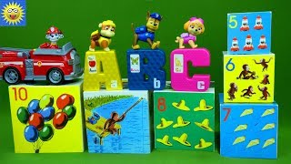 Paw Patrol Puzzle Toys Teaching ABC Alphabet Letters Curious George Counting Numbers Learning Video