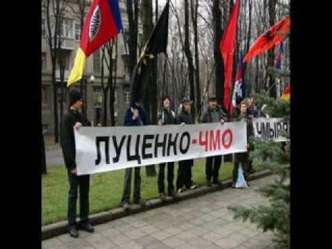 особености украинской политики в картинках.flv