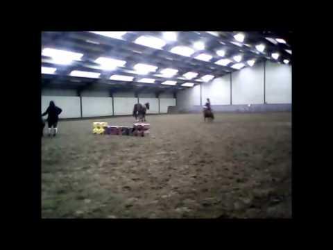 Journée avec les poneys + bêtisier!