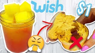 $1 WISH SLIME REVIEW! WTF?!