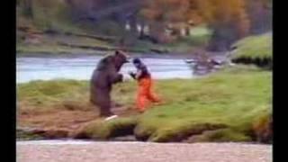 gay bear faces death