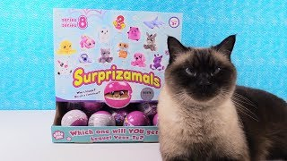 Surprizamals Series 8 Plush Surprizaball Capsules Unboxing Toy Review   PSToyReviews