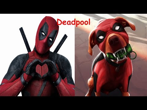 Superheroes In Real Life As Dogs 2017   Teen Titans Go In Real Life   Young Justice In Real Life