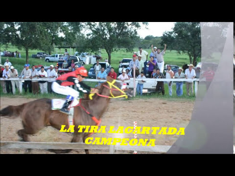 LA TIRA ACEITE vs EL ANDARIEGO. FINAL ABIERTO A 150vrs, CHINAMECA VERACRUZ