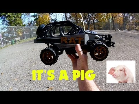 New Bright RC Racing Rat I mean Pig