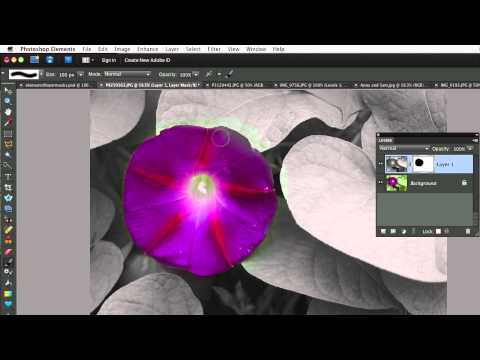 Photoshop Elements 9-Newest Features