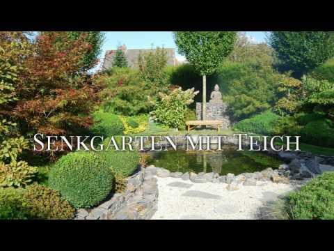 Ammerländer Garten und Koi Blog - Anlage Senkgarten mit Teich