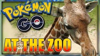 POKEMON GO AT THE ZOO - Pokémon GO Vlog #1