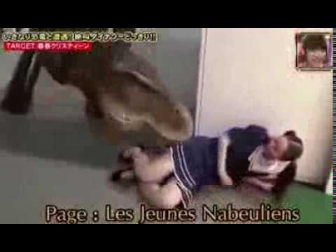 فقط في اليابان، ديناصور في الكاميرا الخفية ههههههه
