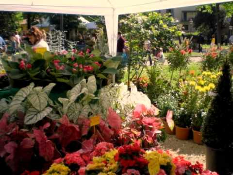 Biag di gardinero / Igorot song / Flowers & Plants Exhibition in Florence Italy