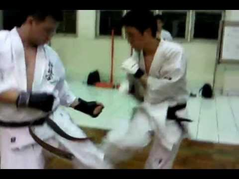 Kyokushin Black Belt Komite Training Image 1
