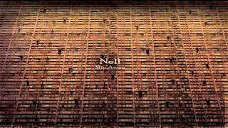 Watch Nell Losing Control video